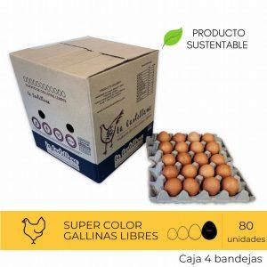 Super color 80 U
