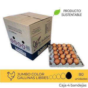 Huevos Jumbo Color 80 Unidades