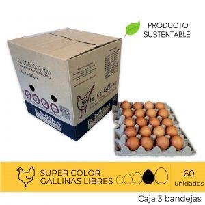 Huevos Super Color  60 Unidades